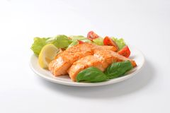 Salmon with vegetable garnish Royalty Free Stock Photo