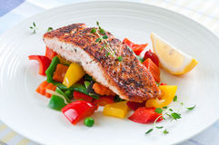 Salmon with vegetables Royalty Free Stock Photography