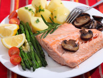 Salmon and vegetables meal Stock Images