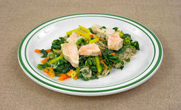 Salmon with vegetables TV dinner Royalty Free Stock Images