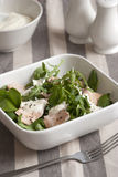 Salmon and watercress salad Royalty Free Stock Photography