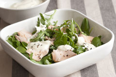 Salmon and watercress salad Stock Photography