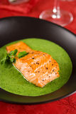 Salmon with watercress sauce. Pan-seared salmon with watercress spinach sauce Stock Image