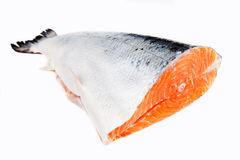 Salmon on a white background, tail Stock Photography