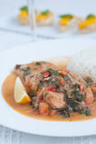 Salmon with white rice. And spinach sauce Stock Image