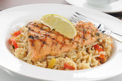 Salmon with wild rice Stock Photo