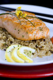 Salmon with wild rice Stock Photography