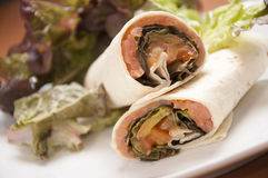Salmon Wrap Royalty Free Stock Photo