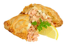 Salmon Wrapped In Crispy Pastry Stock Images
