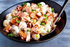 Salmon and young potato warm salad with a lemony yogurt dressing Royalty Free Stock Photos