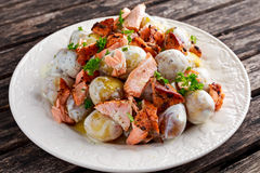 Salmon and young potato warm salad with a lemony yogurt dressing Royalty Free Stock Photography