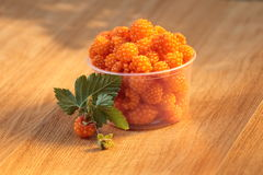 Salmonberries maduros Fotos de archivo libres de regalías