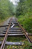 Salmonberry River Trail`s Abandoned Railroad. This is a section of the abandoned railroad on the Salmonberry River trail in Oregon`s Tillamook State Forest Stock Image