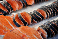 Salmone Fotografia Stock