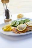 Salmone al forno con i limoni affettati ed i cetrioli verticali Fotografia Stock