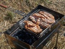 Salmone arrostito Immagini Stock