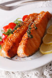 Salmone arrostito con sesamo ed insalata fresca su una macro del piatto ver Immagine Stock
