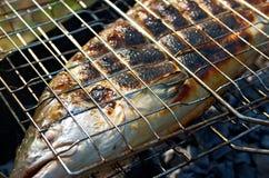 Salmone che cucina su una griglia Fotografia Stock