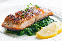 Salmone con spinaci Fotografia Stock