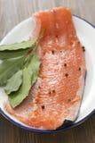 Salmone crudo con pepe nero e la foglia di alloro Fotografia Stock