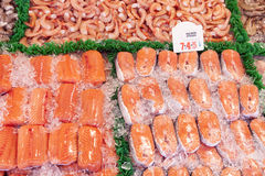Salmone fresco Fotografia Stock