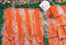 Salmone fresco Immagine Stock Libera da Diritti