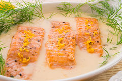 Salmone grigliato con aneto Immagine Stock