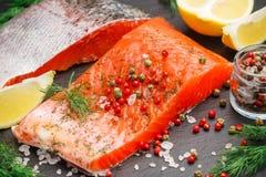 Salmone salato delizioso con le spezie, il limone e l'aneto Fotografie Stock