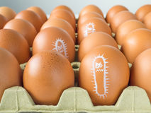 Salmonella bacterium drawn on eggs. Salmonella bacterium drawn on the chicken eggs concept Royalty Free Stock Images
