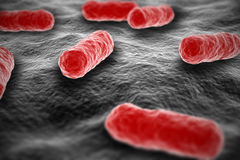 Salmonella bacterium microscopic view on surface Stock Photo