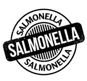 Salmonella rubber stamp Royalty Free Stock Photos