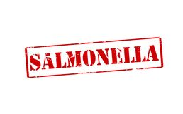 Salmonella. Rubber stamp with word salmonella inside,  illustration Royalty Free Stock Image