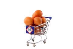 Salmonella's in eieren Royalty-vrije Stock Foto's
