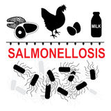 Salmonella typhimurium and salmonellosis transmission Stock Photo