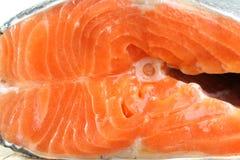 Salmones Foto de archivo libre de regalías