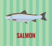 Salmones Imagenes de archivo