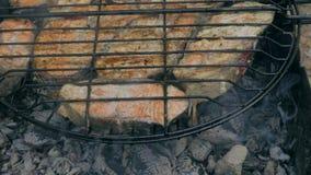 Salmones asados a la parrilla fritos en el Bbq Adobo de la salsa blanca y del limón metrajes