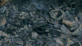Salmones asados a la parrilla fritos en el Bbq Adobo de la salsa blanca y del limón almacen de metraje de vídeo