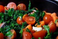Salmones con espinaca y tomates Foto de archivo