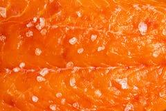 Salmones con la sal del mar imágenes de archivo libres de regalías