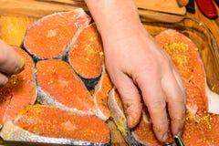 Salmones crudos Fotografía de archivo