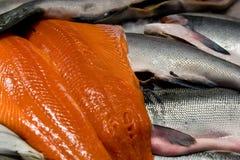 Salmones de rey Fotos de archivo