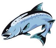 Salmones de salto stock de ilustración