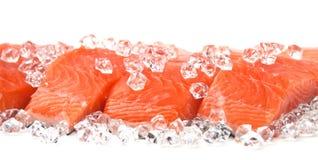 Salmones en el hielo Imágenes de archivo libres de regalías