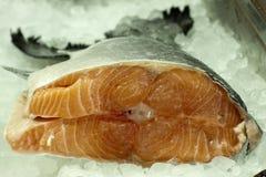 Salmones frescos del hielo Imagen de archivo
