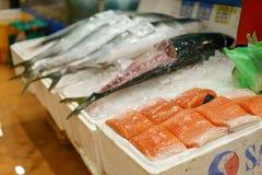 Salmones frescos en el mercado de los mariscos de Noryangjin Foto de archivo