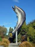 Salmones gigantes en Rakaia, Cantorbery, Nueva Zelanda Fotografía de archivo libre de regalías