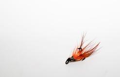 Salmonfly 免版税库存图片
