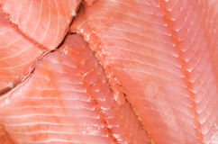 Salmoni Fotografie Stock Libere da Diritti