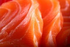 Salmoni Immagini Stock Libere da Diritti